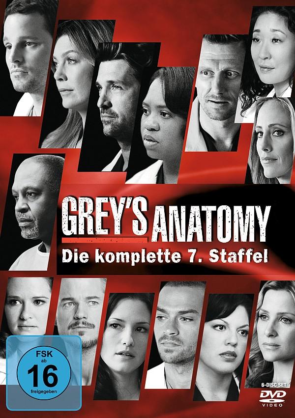Greys Anatomy Staffel 14 Stream Bs